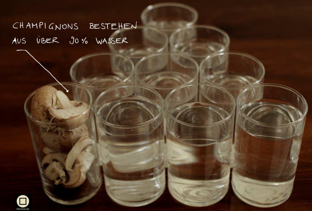 Champignons bestehen zu über 90 Prozent aus Wasser